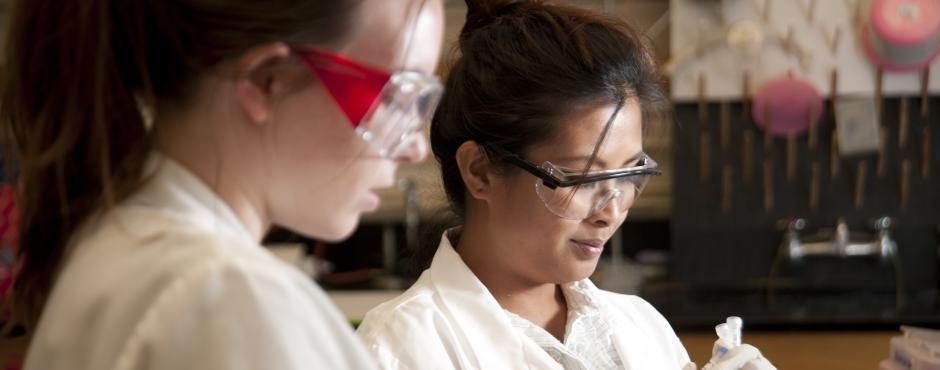 Image of UC Davis Ranks #1 for Total Women in STEM Among the 50 Colleges Recognized for Advancing Women in STEM