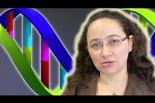 CAMPOS Faculty Scholar Mariel Vazquez Featured in Two YouTube Videos on DNA Topology